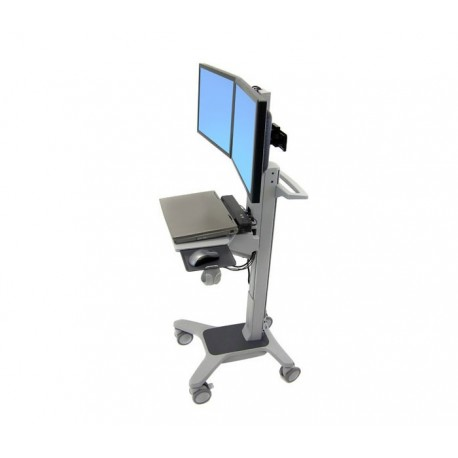 Ergotron Dual WideView WorkSpace