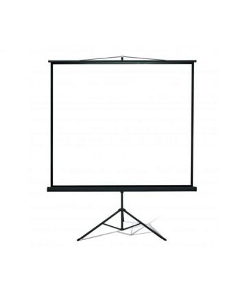 Kauber Econo Tripod 238 x 238 cm - Ekran projekcyjny na statywie