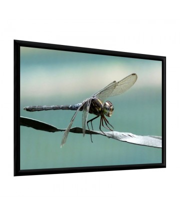 Adeo PLANO - Ramowy ekran projekcyjny do kina domowego