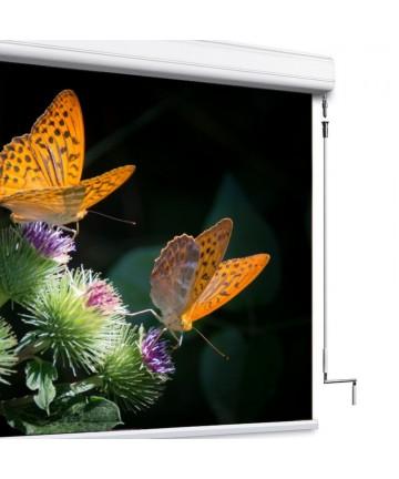 Adeo Winch Professional - ekran projekcyjny z napędem korbowym